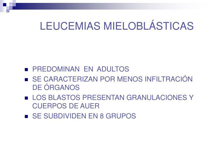 LEUCEMIAS MIELOBLÁSTICAS