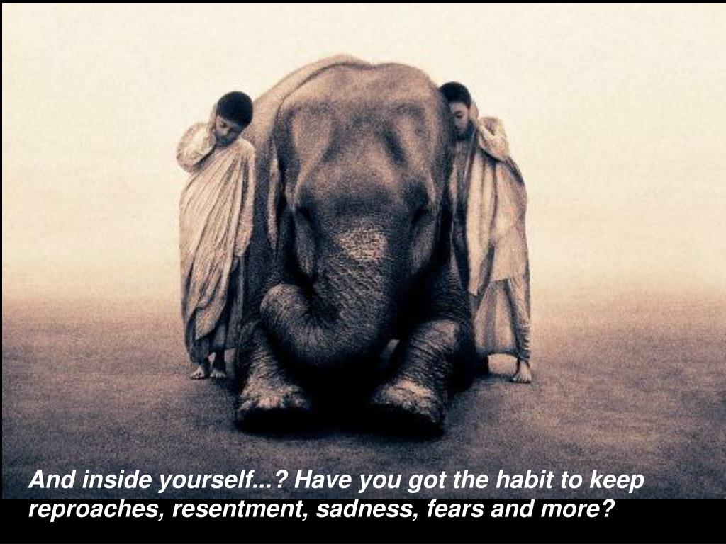 And inside yourself...? Have you got the habit to keep reproaches, resentment, sadness, fears and more?