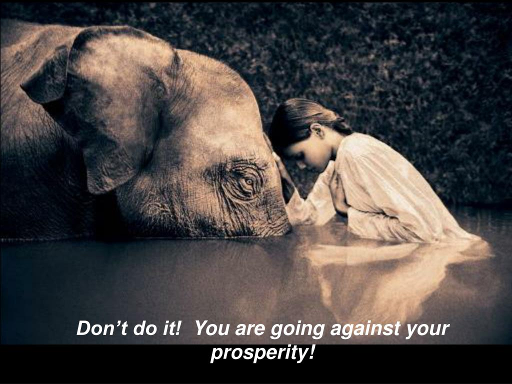 Don't do it!  You are going against your prosperity!