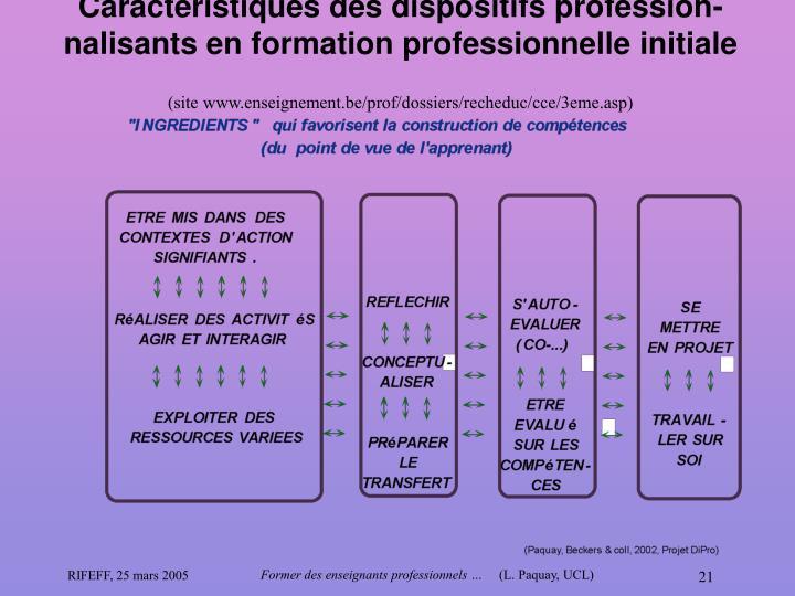Caractéristiques des dispositifs profession-nalisants en formation professionnelle initiale