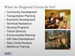 what do regional councils do