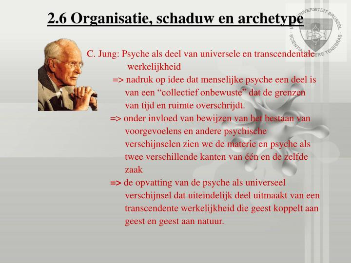 2.6 Organisatie, schaduw en archetype