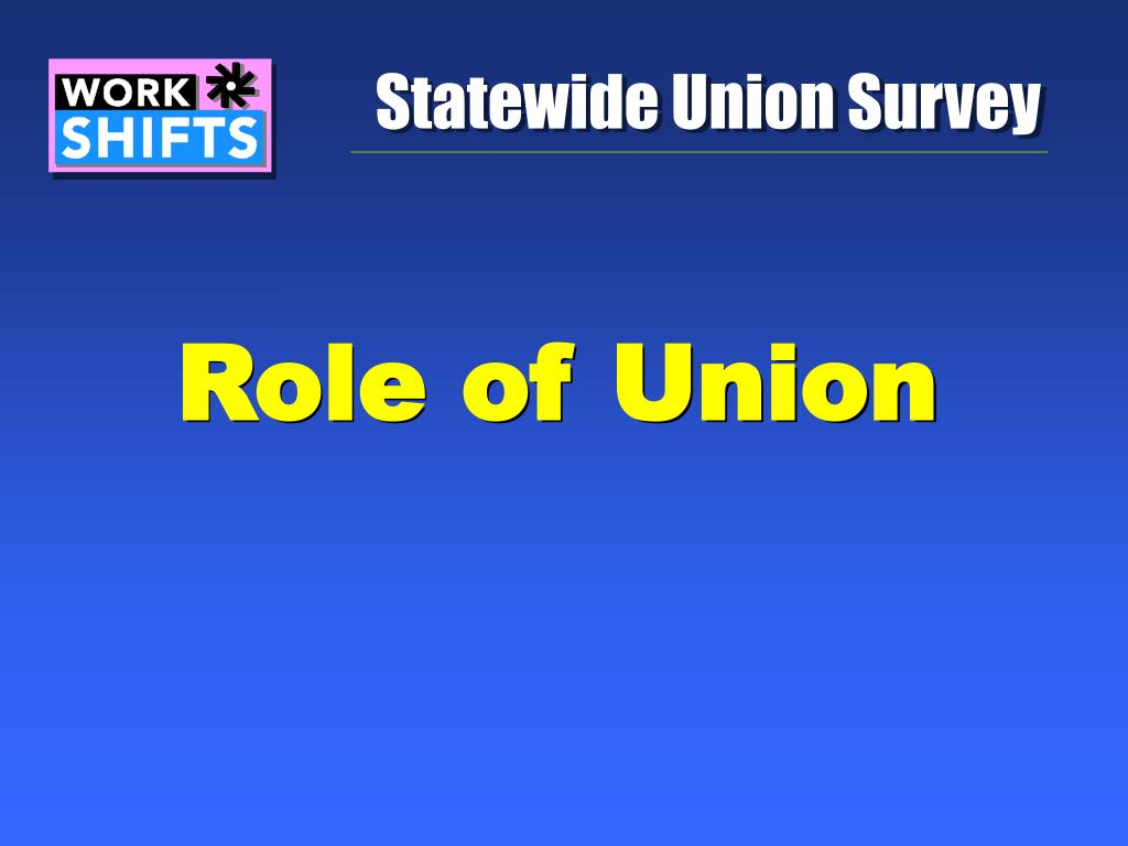 Statewide Union Survey