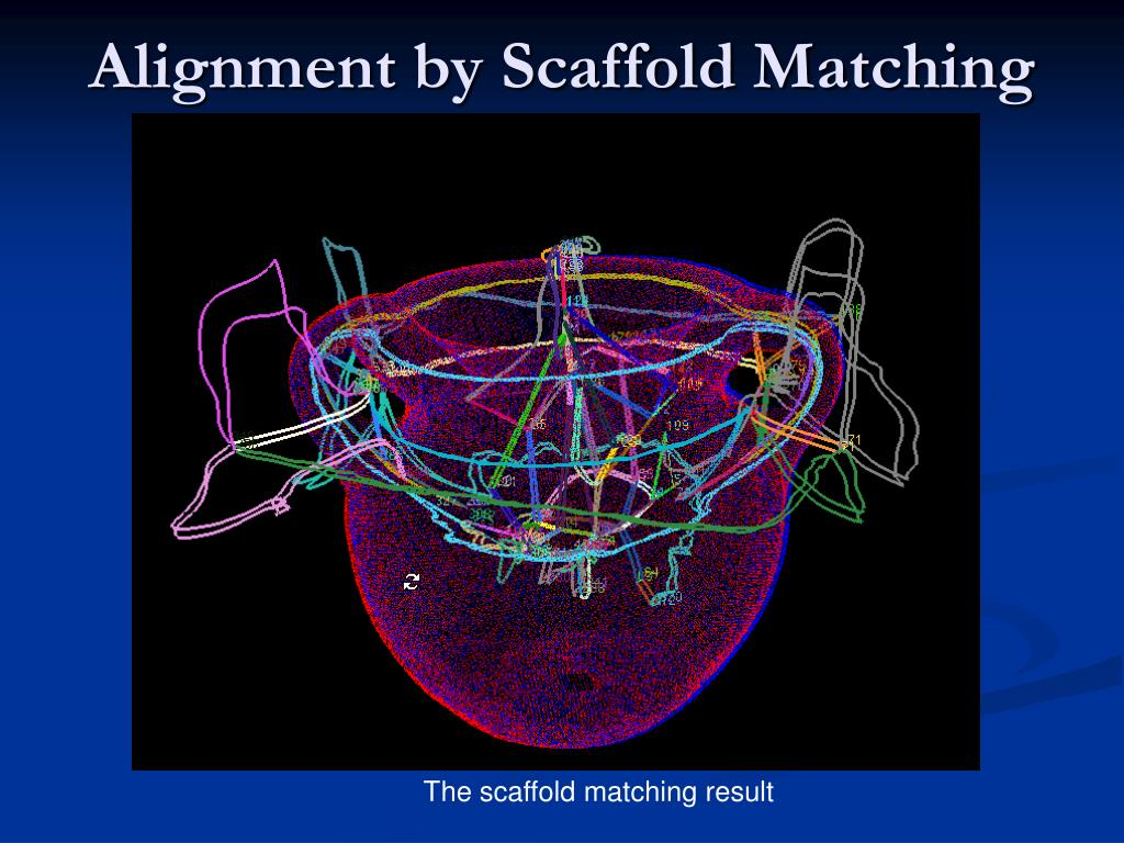 Alignment by Scaffold Matching