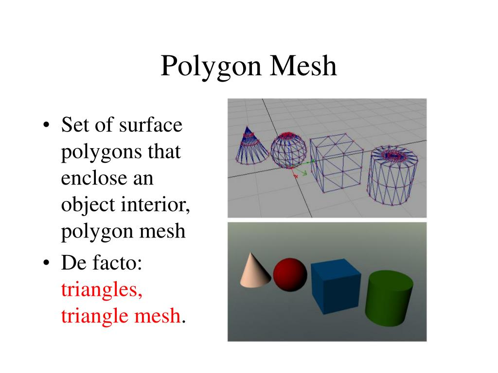 Polygon Mesh