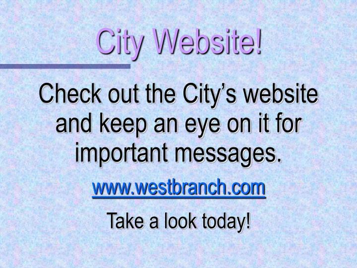 City Website!