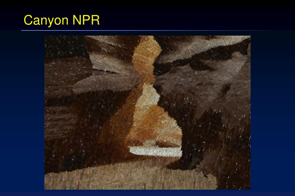 Canyon NPR