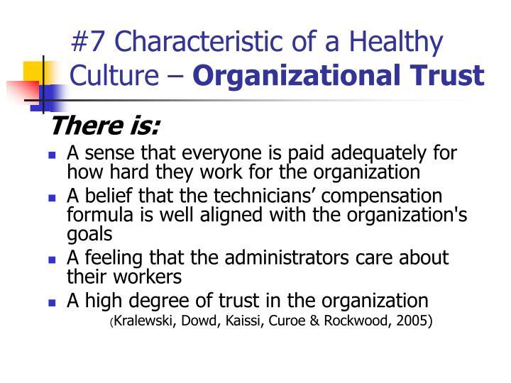 7 characteristics of organizational culture pdf