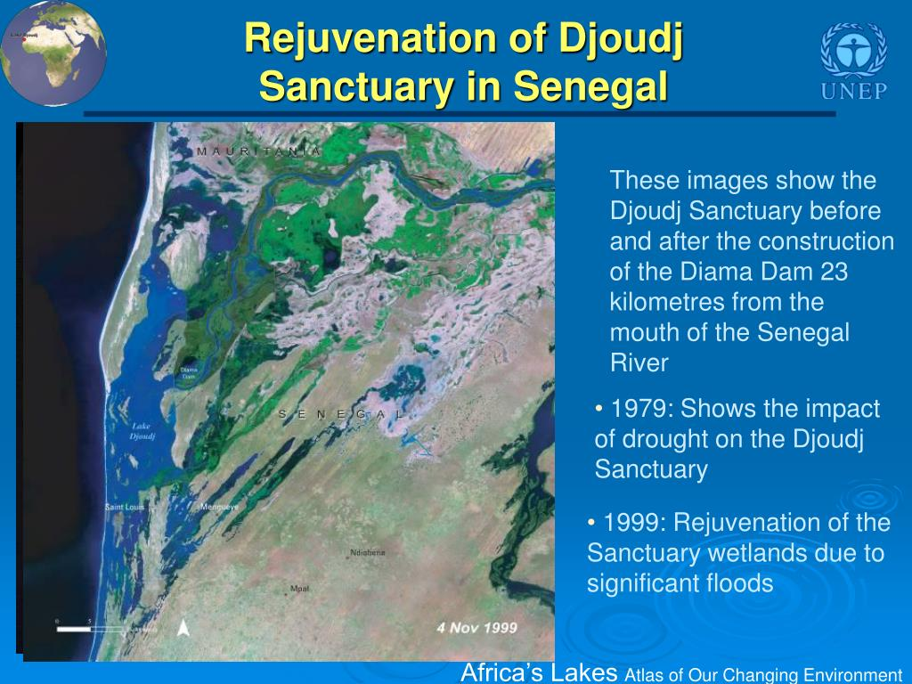 Rejuvenation of Djoudj