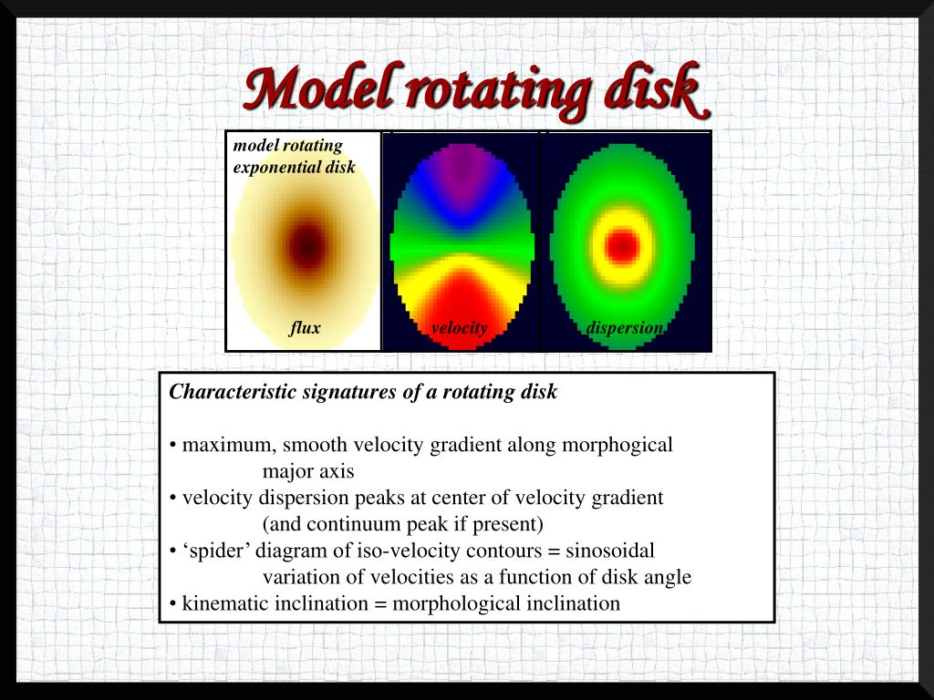 model rotating exponential disk