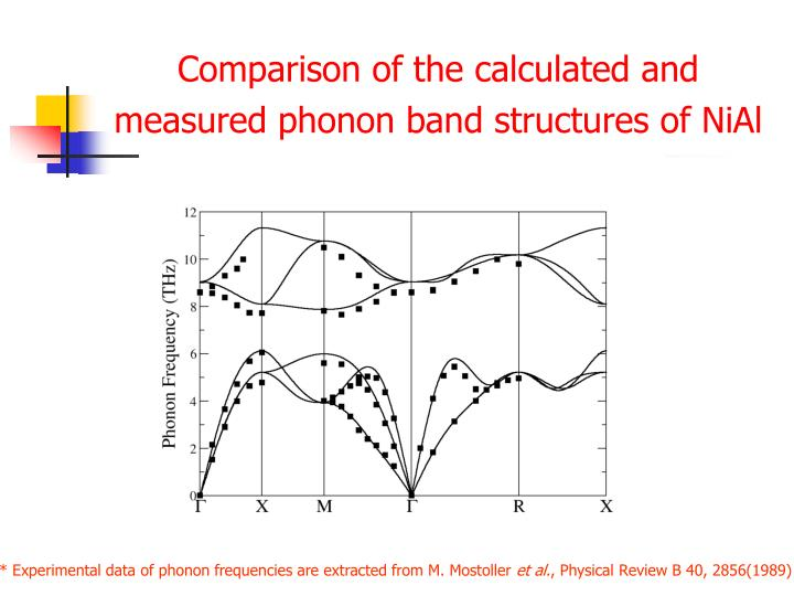 Comparison of the calculated and measured phonon band structures of NiAl