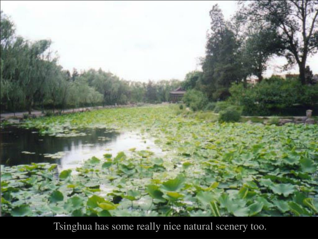 Tsinghua has some really nice natural scenery too.