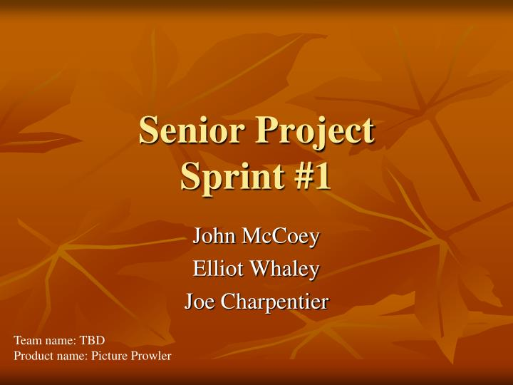Senior project sprint 1