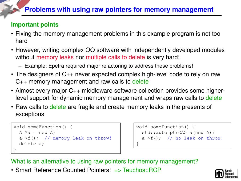 Problems with using raw pointers for memory management