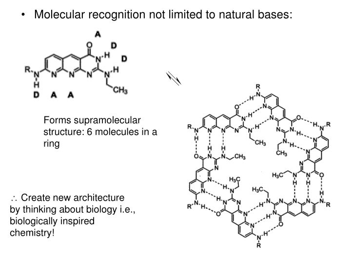 Molecular recognition not limited to natural bases: