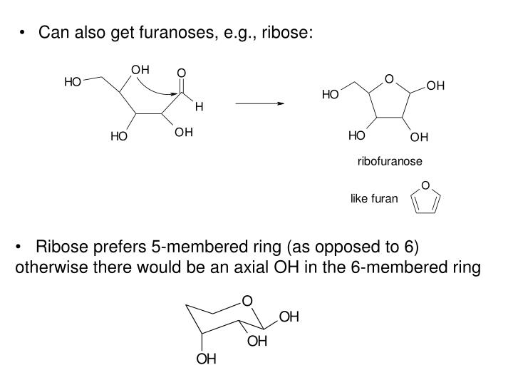 Can also get furanoses, e.g., ribose: