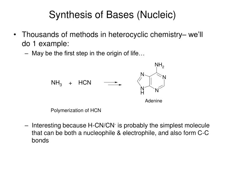 Synthesis of Bases (Nucleic)