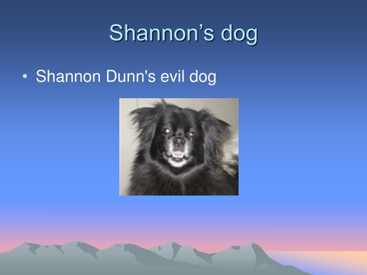 Shannon's dog