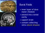 dural folds1