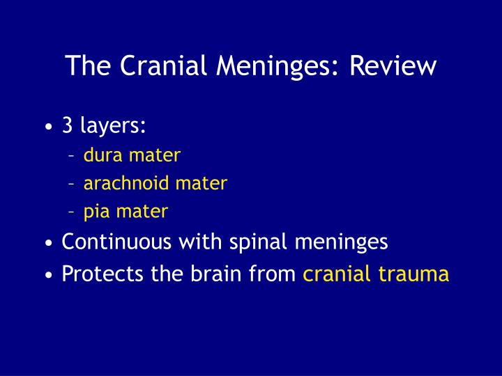 The Cranial Meninges: Review