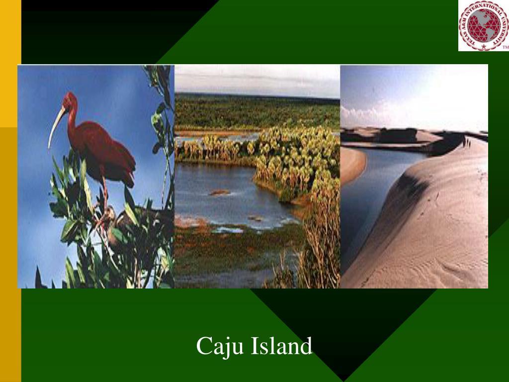 Caju Island