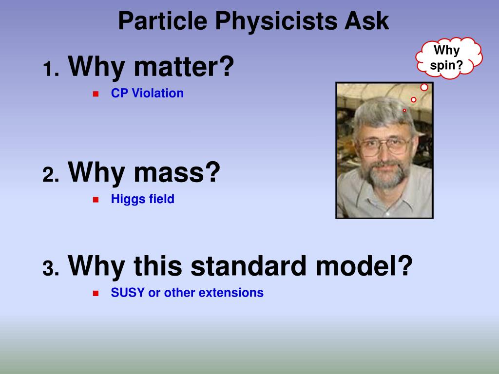 Particle Physicists Ask