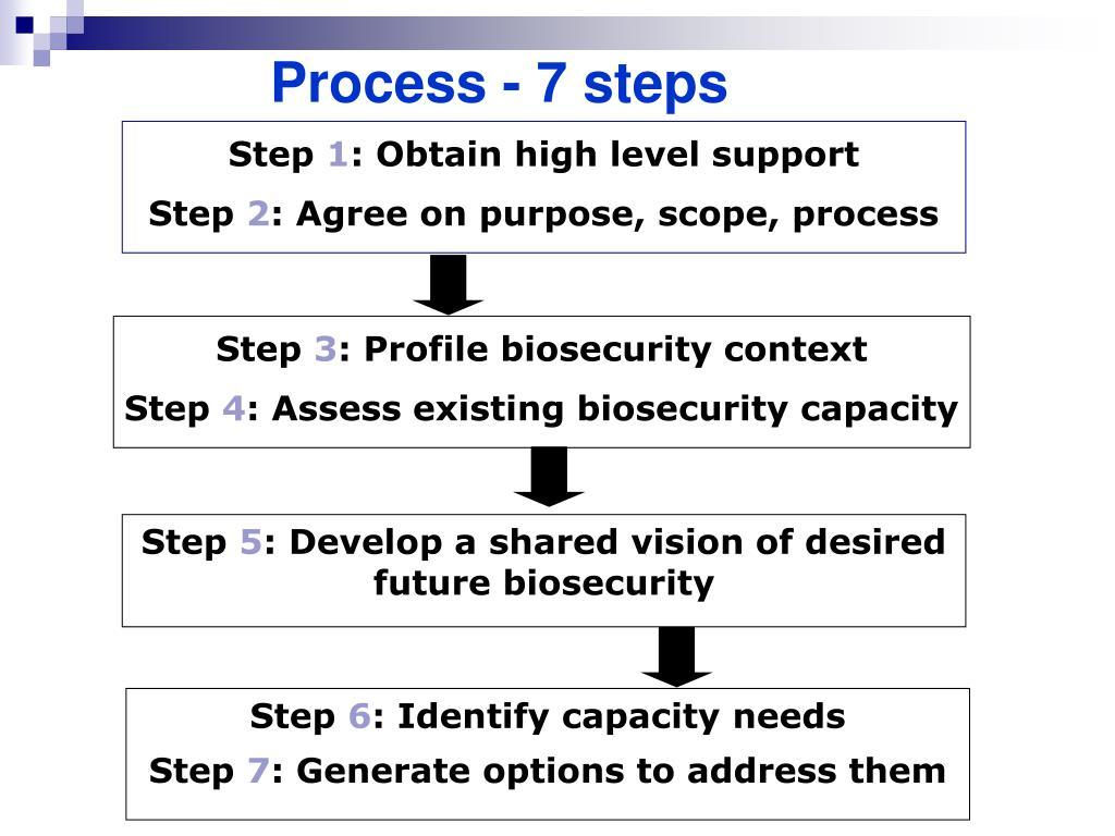 Process - 7 steps
