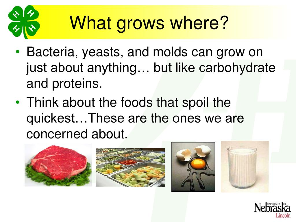 Bacteria, yeasts, and molds can grow on just about anything… but like carbohydrate and proteins.