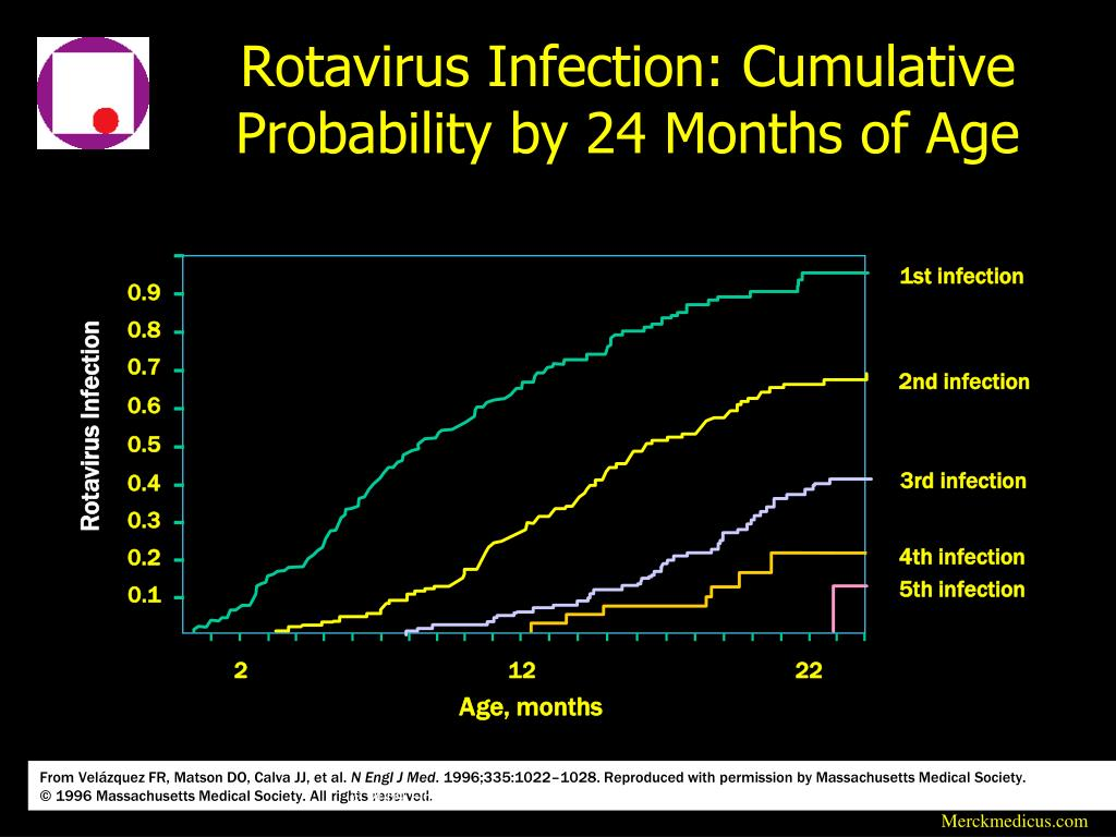 Rotavirus Infection: Cumulative Probability by 24 Months of Age