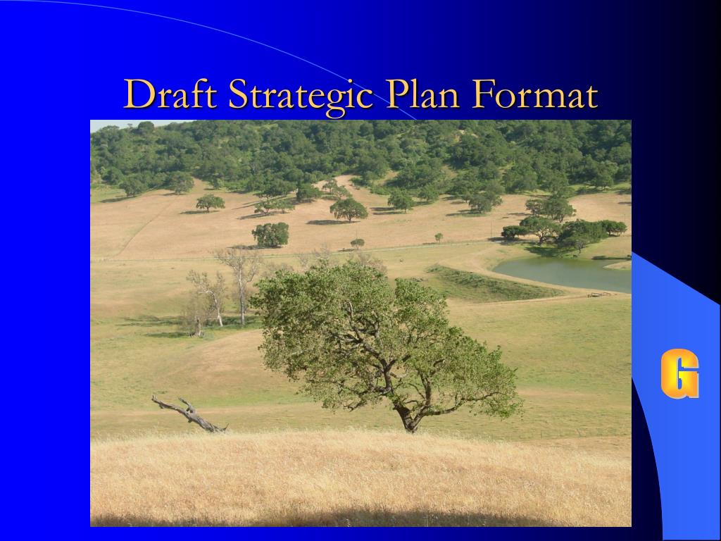 Draft Strategic Plan Format