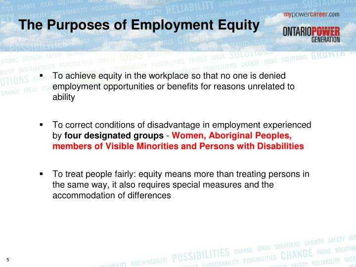 The Purposes of Employment Equity