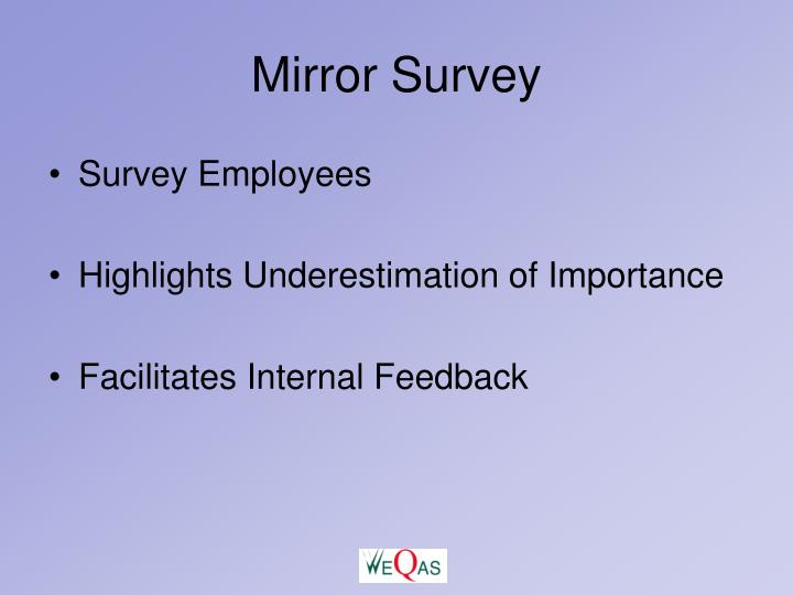 Mirror Survey