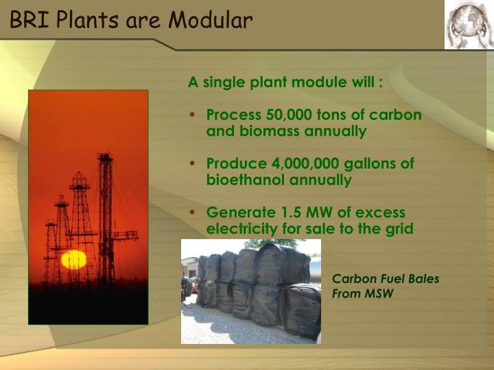 BRI Plants are Modular