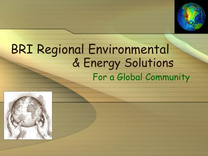 BRI Regional Environmental