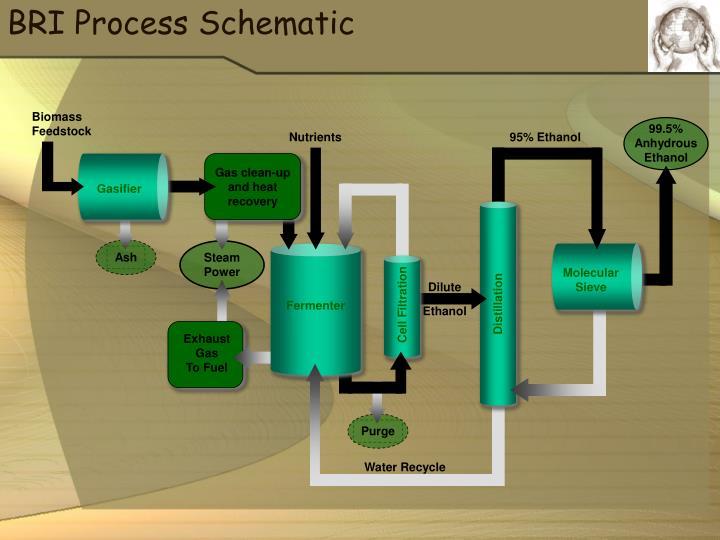 BRI Process Schematic