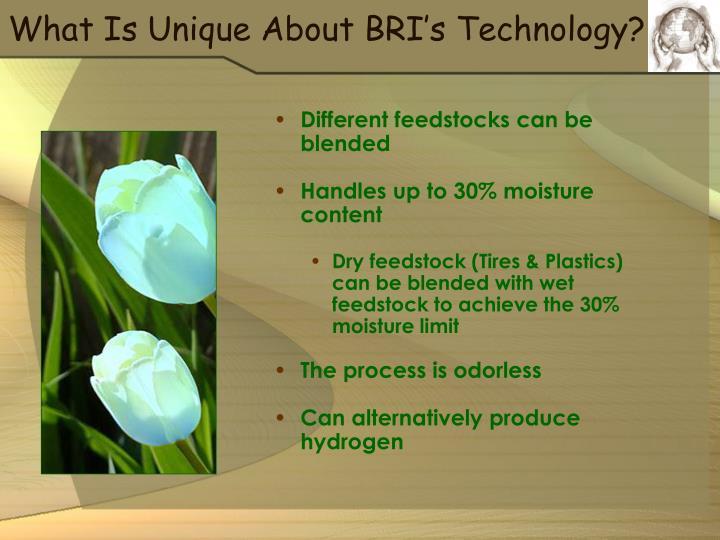 What Is Unique About BRI's Technology?