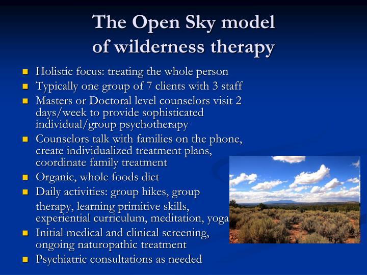The Open Sky model