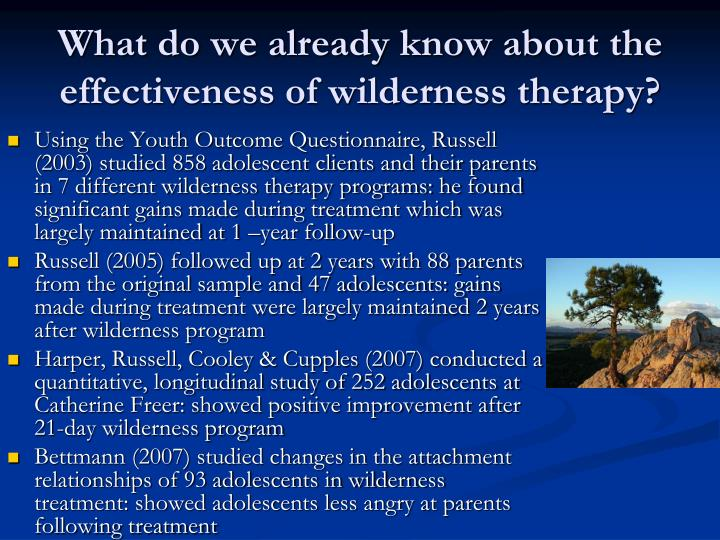 What do we already know about the effectiveness of wilderness therapy?