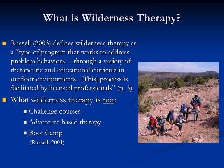 What is Wilderness Therapy?