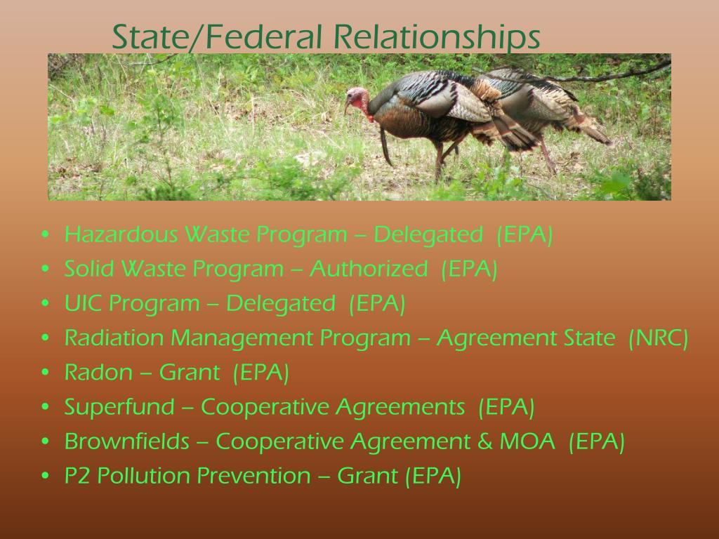 State/Federal Relationships