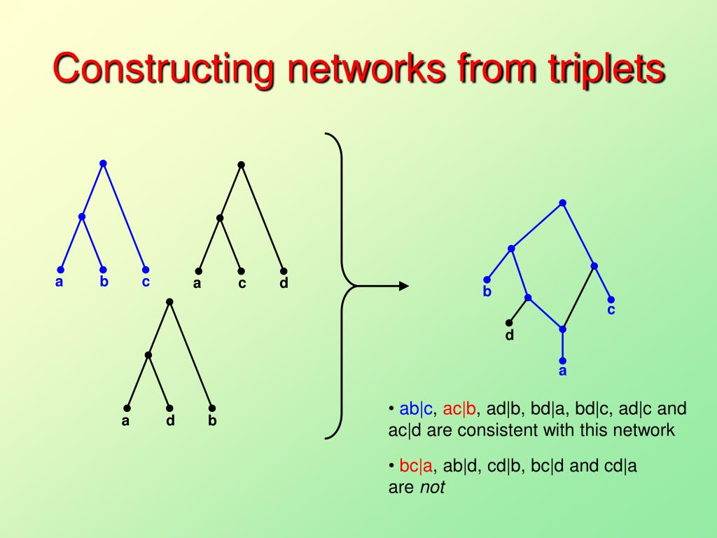 Constructing networks from triplets