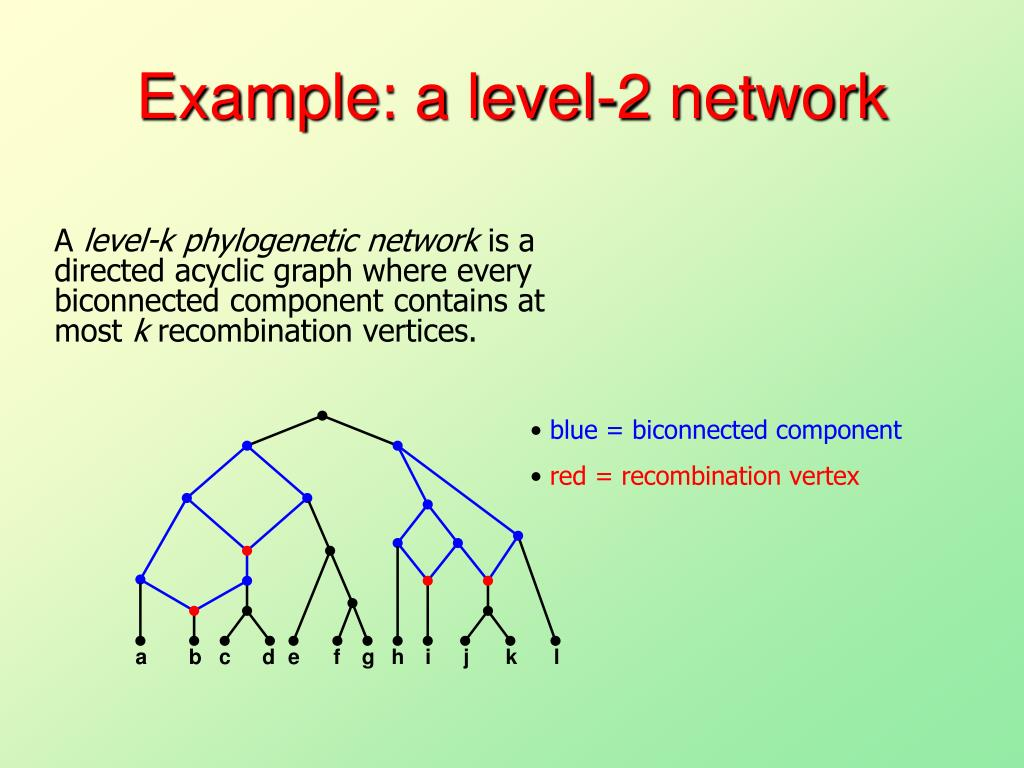 Example: a level-2 network