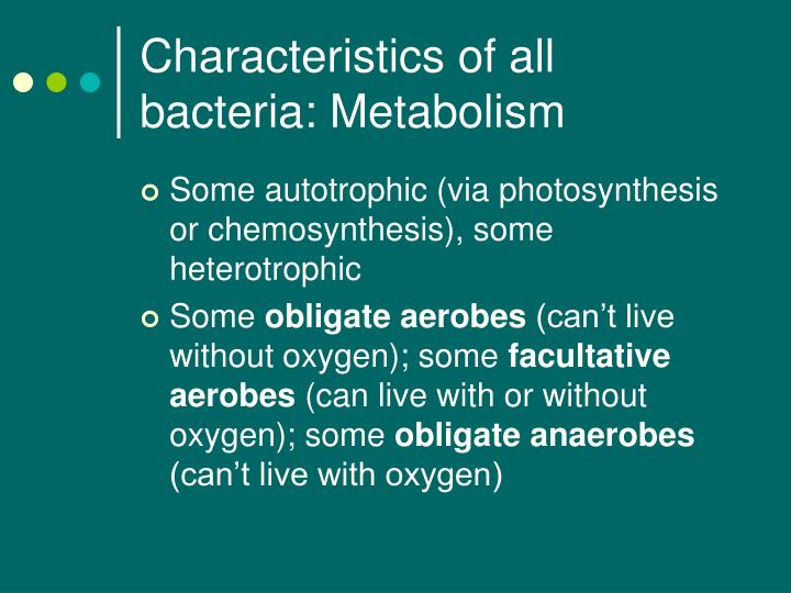 organisms undergo chemosynthesis Introduction photosynthetic bacteria have been around for longer than the earth's atmosphere could sustain human life it was only recently though that scientists began to unravel the mystery of how these micro-organisms execute the.