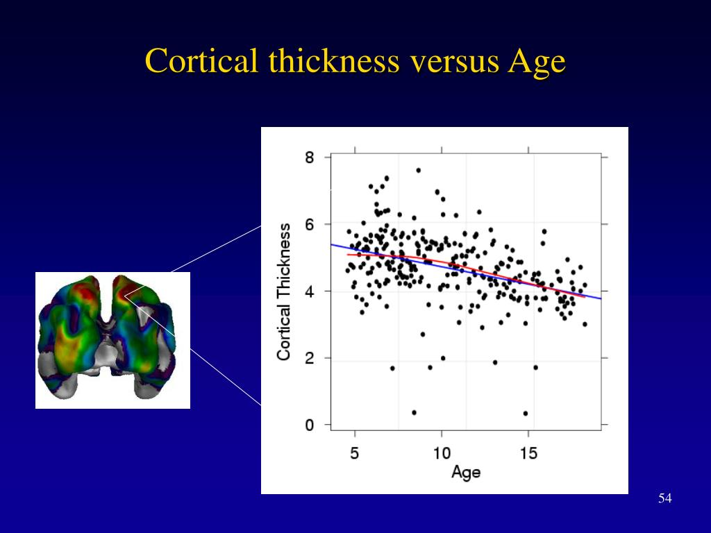 Cortical thickness versus Age