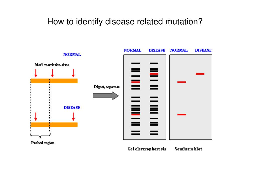 How to identify disease related mutation?