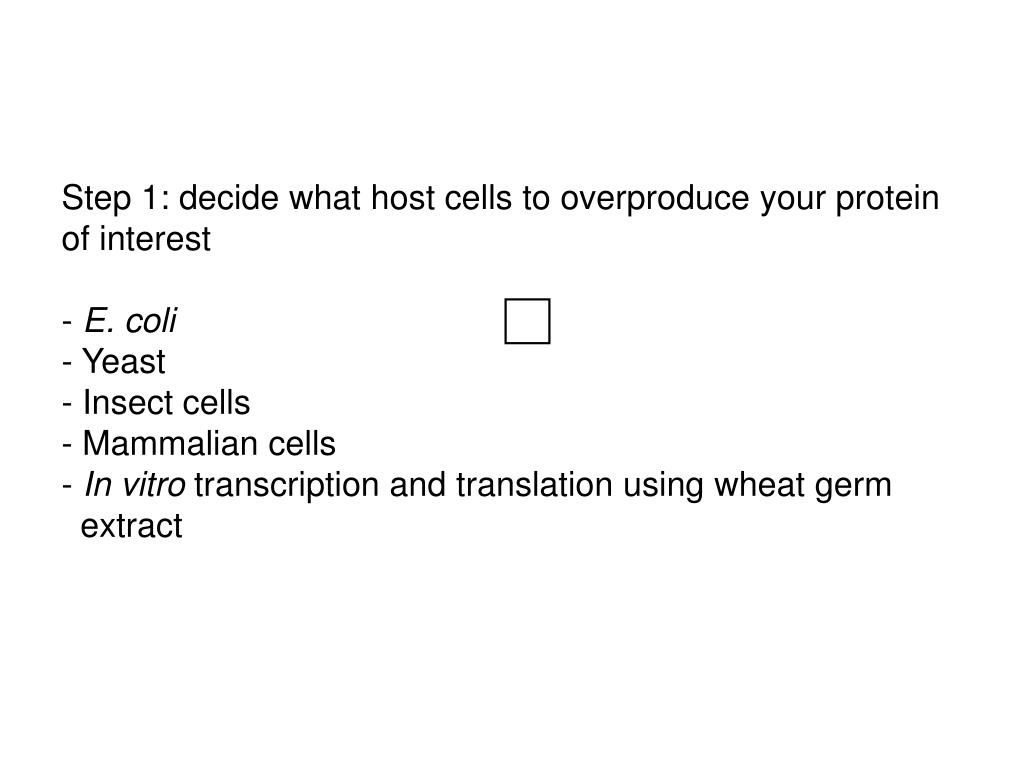 Step 1: decide what host cells to overproduce your protein