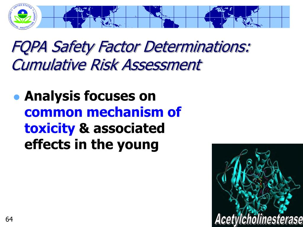 FQPA Safety Factor Determinations: