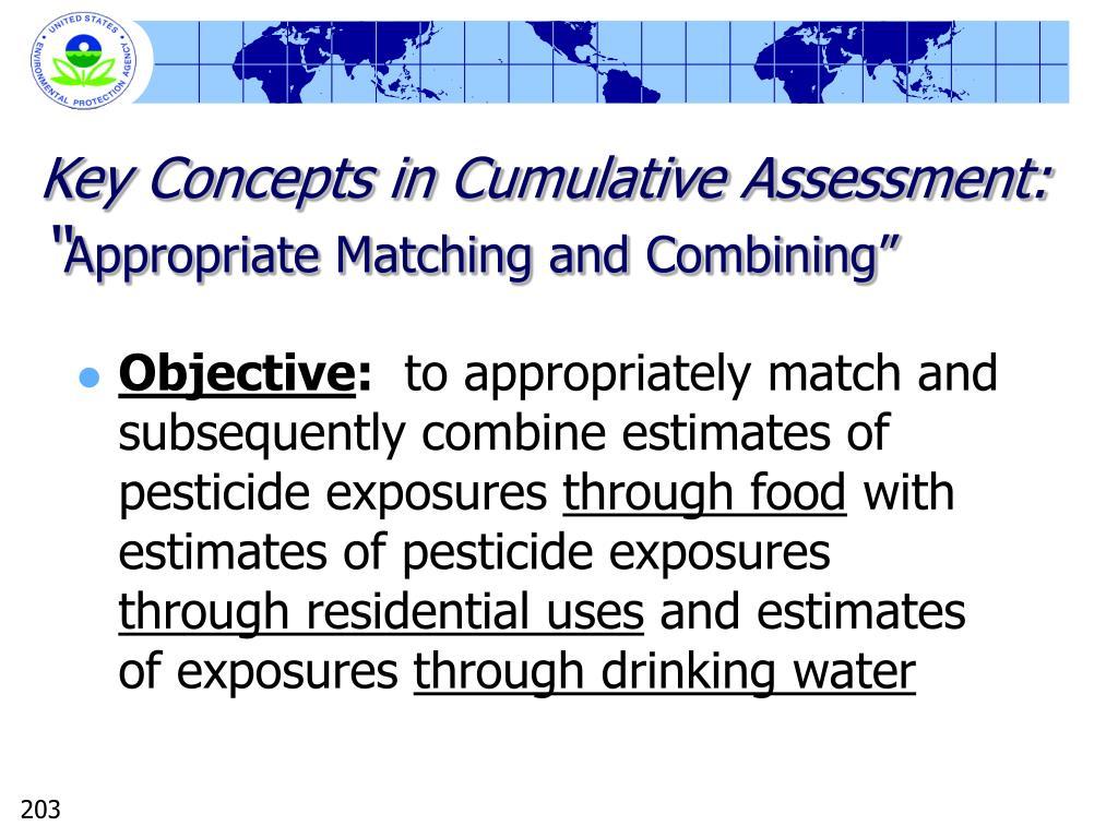 Key Concepts in Cumulative Assessment: