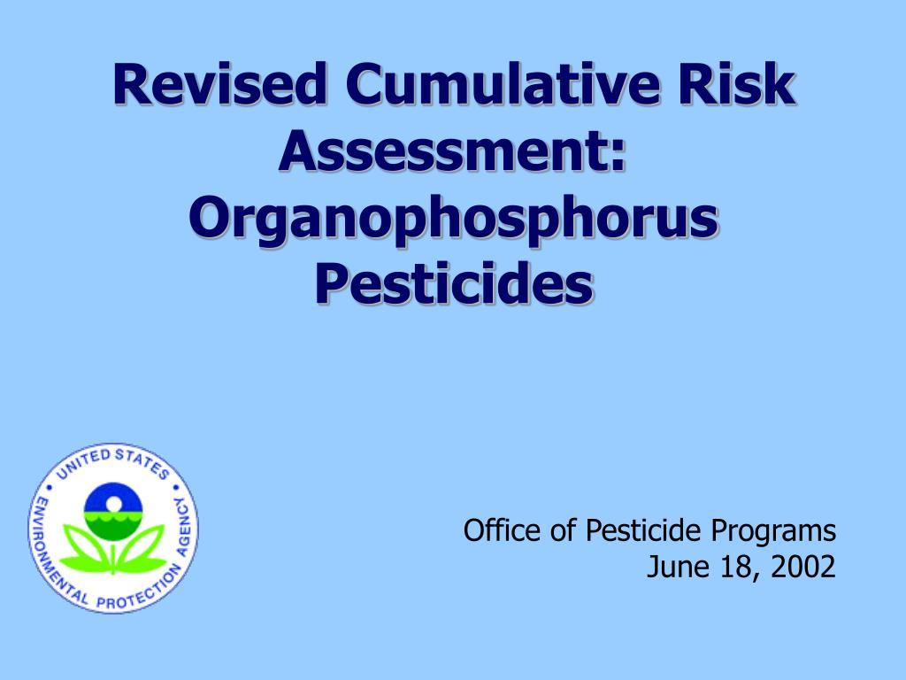 Revised Cumulative Risk Assessment: