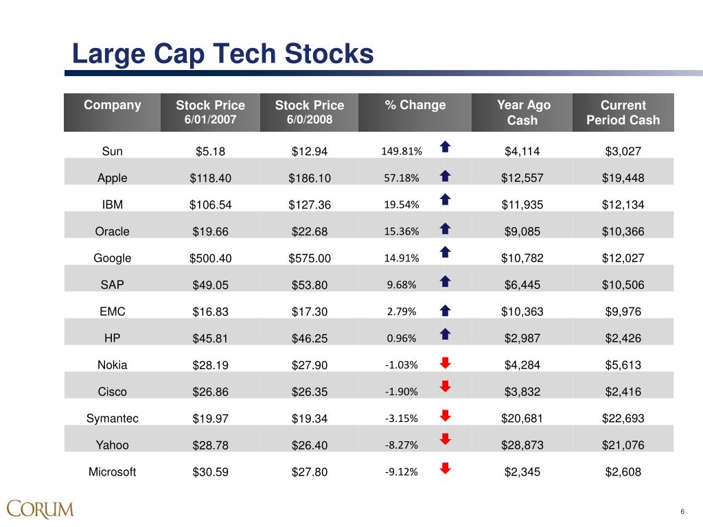 Large Cap Tech Stocks